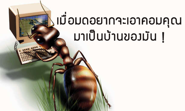 computer should avoid ant to go inside