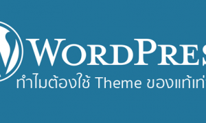 wordpress premium theme ของแท้